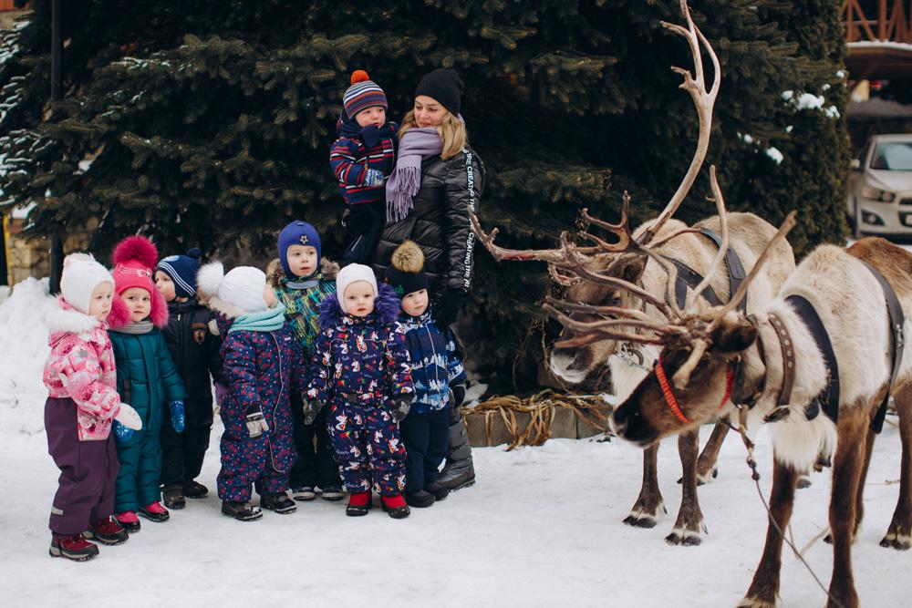 Мостик детский сад: зима 2021, Олени
